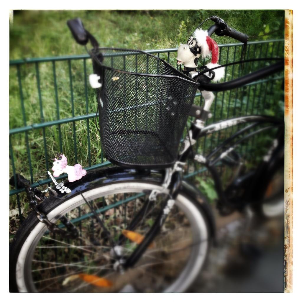 Bizarro Bike